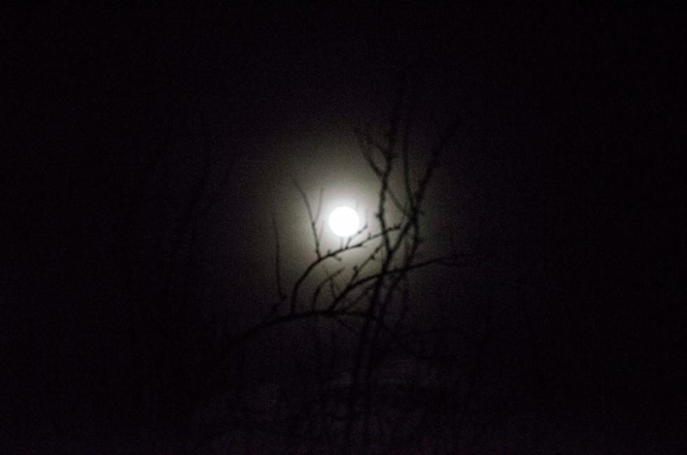 В Україні затемнення було видно лише частково