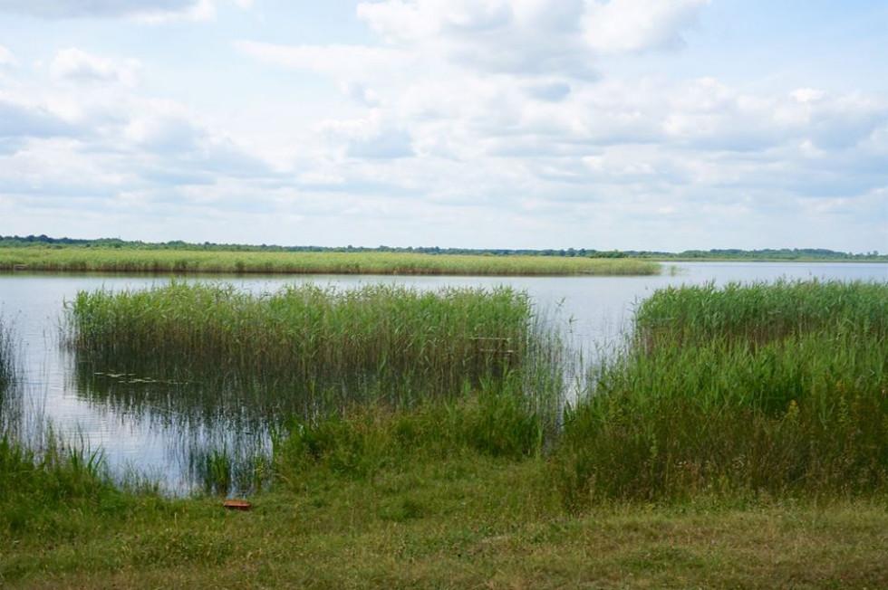 Озеро Луки