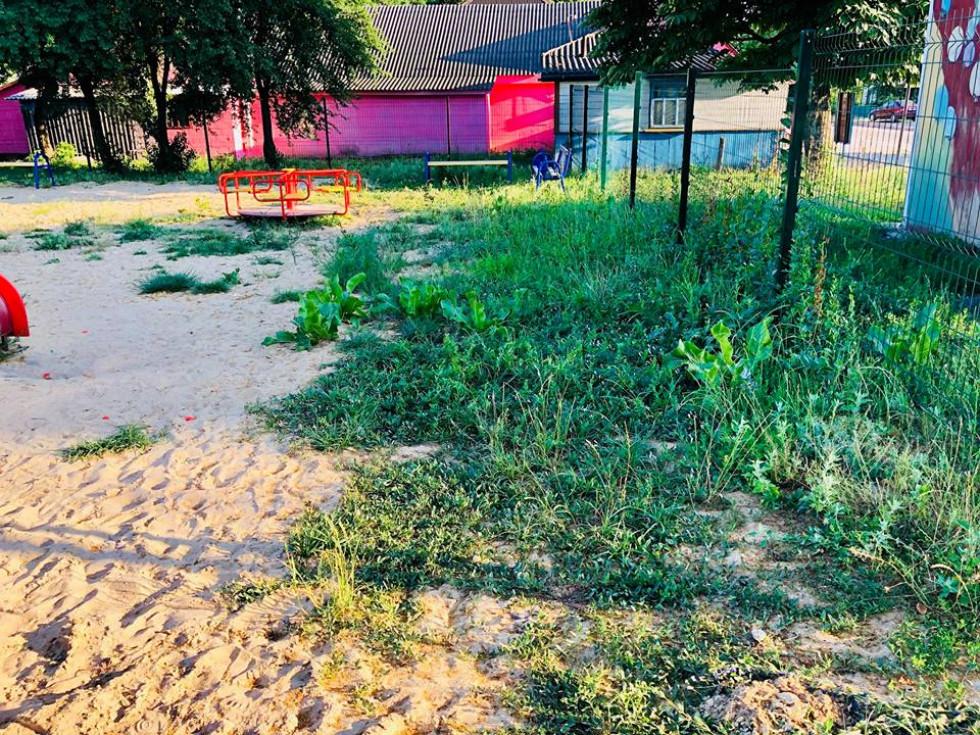 Майданчик заростає високою травою