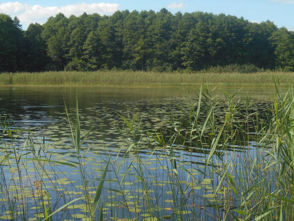 Озеро Солинка