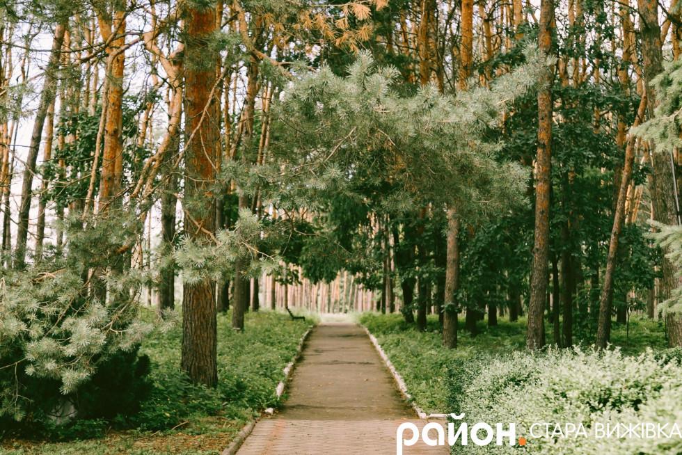 Парк поруч з адмінбудівлею